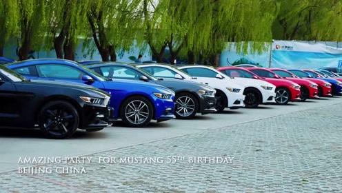 Mustang活动视频成片4.23