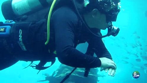 90后小伙异乡打拼,当潜水教练开潜水俱乐部,为给妻女一个家
