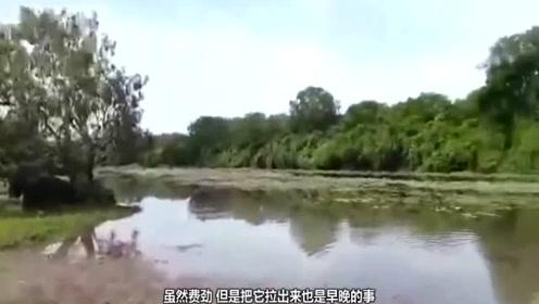 河边钓鱼遭遇惊恐一幕,吓得男子丢竿逃命