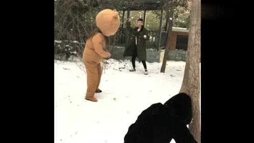 躺着也中枪,网红熊都快被这大雪球砸晕了,心疼小姐姐三秒钟