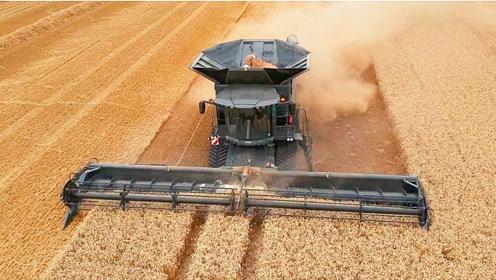 这小麦收割机也太大了,真让人热血沸腾