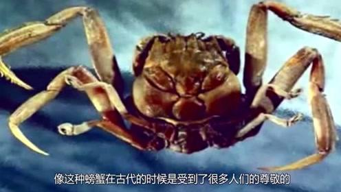 """男子海边发现""""人脸螃蟹"""",长相怪异恐怖,老渔民一眼认出它!"""