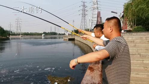 无鱼可钓时如何玩出鲫鱼的手感?请看视频中的北京钓友!