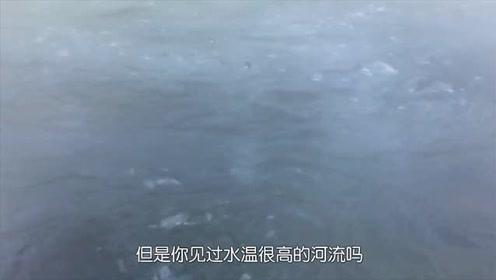 这条河温度高达100度,生物掉进去活活被煮熟,比温泉还神奇