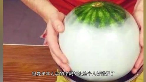 用蜡将西瓜整个密封,放入地窖后半年,切开整个人都懵逼了
