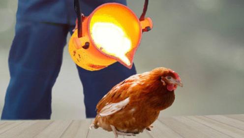 """小哥将1000°熔铜浇在鸡身上,""""烤鸡""""新做法,你敢尝尝吗?"""