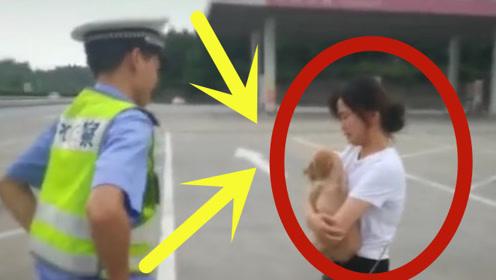 女子警车前痛哭,竟将养了5年的狗丢在服务区,交警帮忙火速找回