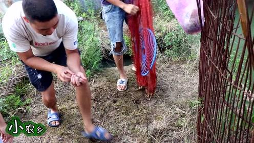 5米深的蓄水池3年未干,小伙2人撒网抓鱼,这收获,让人发笑