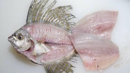日本人吃生鱼不眨眼,看着鱼骨架更有食欲,网友:影响胃口