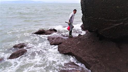 阿烽鬼节去荒岛抓到半桶海货,遇海上暴风云压顶,以最快速度逃跑
