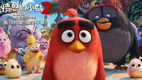 """《愤怒的小鸟2》口碑特辑 全场观众""""哈哈哈哈""""笑到岔气"""
