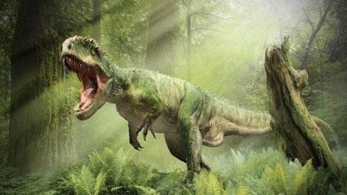 """为什么恐龙没进化成""""恐龙人""""?科学家恐慌:有这个倾向!"""