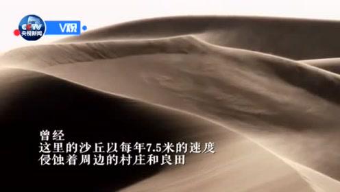 习近平甘肃行:看八步沙林场新面貌