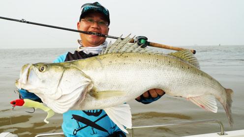 蓝旗鱼路亚 | 贴近桥墩搜海鲈,小伙伴能在浑水里钓出大鱼吗?