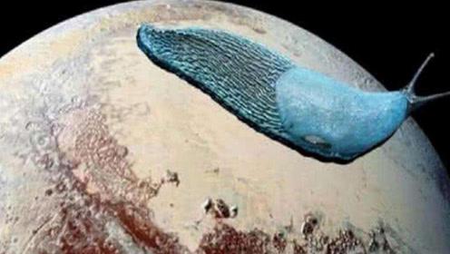 美国探测器拍到冥王星巨型生物,体型堪比摩天大楼,长相酷似蜗牛