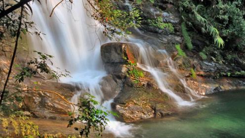 """广东鼎湖山:被誉为""""北回归线上的绿宝石"""",风景太美!"""