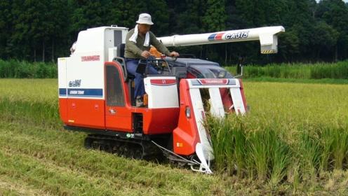 日本发明迷你水稻收割机,收割打包一次成型,一天就能收割20亩