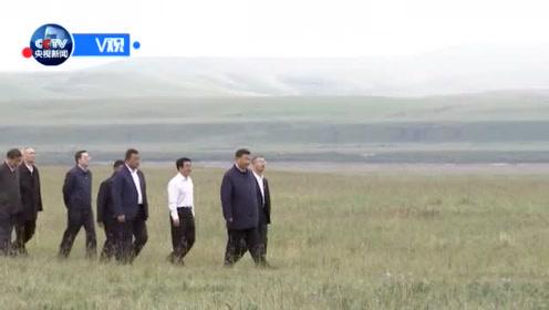 习近平谈祁连山保护:要筑牢生态安全屏障