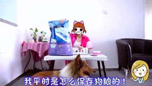 狗粮一次买多了,应该如何储存呢?教你一个小妙招!