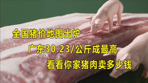 全国猪价地图出炉,广东最高,看看你家猪肉卖多少钱