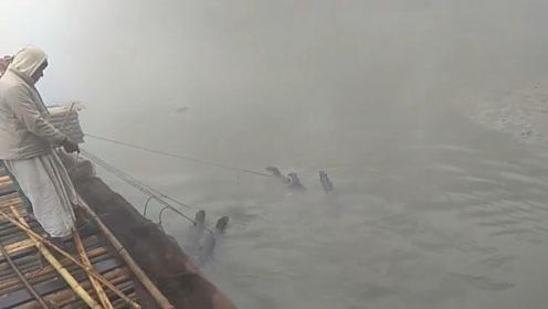 """在孟加拉,传说中的""""水鬼""""被训练成捕鱼能手,画面冲击视网膜"""