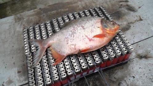 老外又做创新!用300个打火机烤鱼,看到成品,属实不敢下嘴