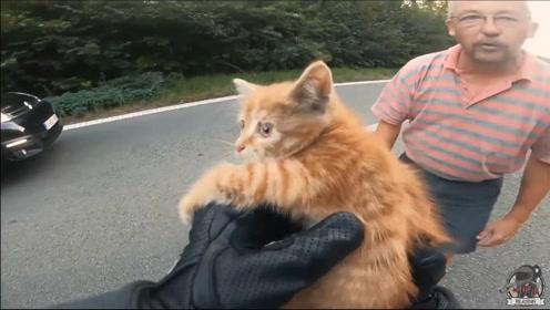 小猫在公路中间瑟瑟发抖,幸好被路过的摩托手小哥和善良大叔救下