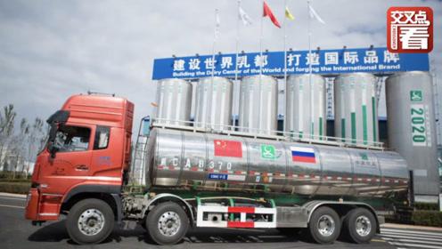 """两国领导人背书!中国人第一次喝上俄罗斯""""放心奶"""""""
