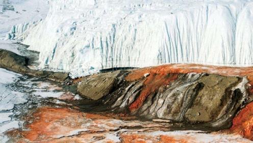 南极一处冰川,上百年来一直流出血水,科学家被吓哭!