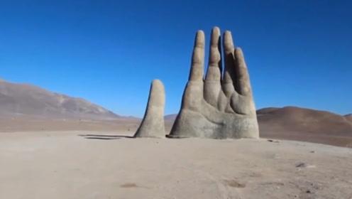 世界上最特别三只手,一只长在沙漠,一只握着树,最后一只在中国