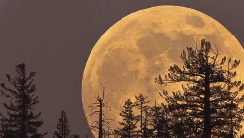超级月亮会影响到地球?还会带来灾难?为何会被这样说?
