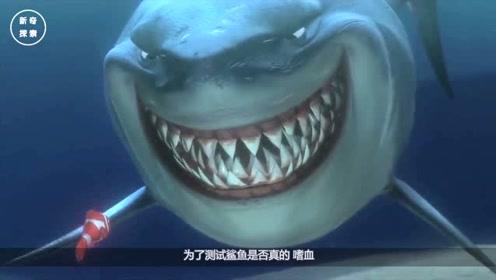 鲨鱼真的能闻到血腥味吗?小伙用鲜血做测试,场面非常失控!