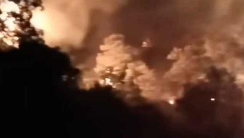警示!江西一天内发生两起森林火灾:焚烧疫木、田埂引发