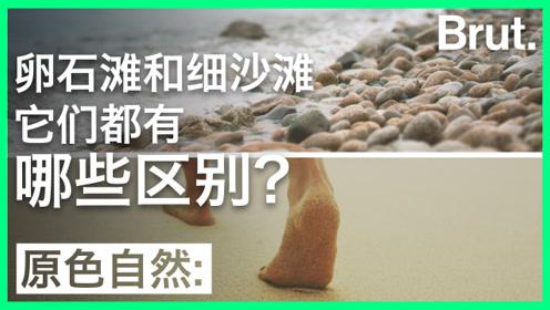卵石滩和细沙滩都有哪些区别?