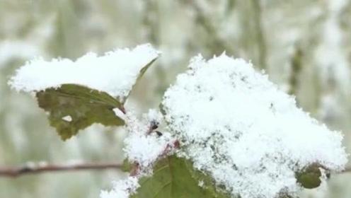 才到中秋节,这些地方就下大雪了