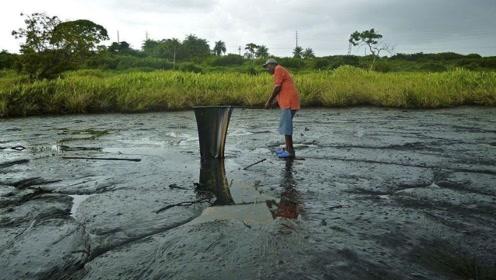 这片没有水的湖,流淌的全是沥青,科学家挖出大量动物尸骨