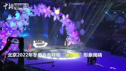 北京冬奥会吉祥物揭晓熊猫造型惹人爱