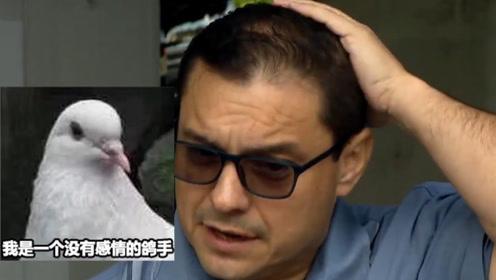 尴尬!芝加哥议员直播讨论解决鸽子粪便问题 却被拉了一头shi