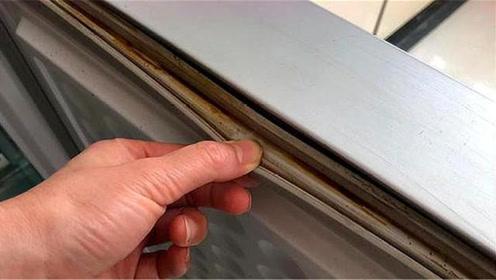 冰箱封条发霉发黑严重?一个技巧立马变干净,不伤胶条彻底去霉斑
