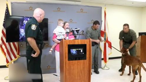 3岁自闭症儿童失踪,搜救队2小时一无所获,搜救犬半小搞定