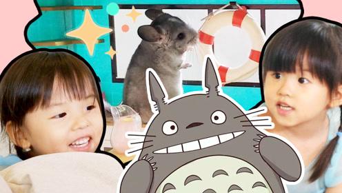 龙猫有多讨孩子喜欢?开心好奇的宠物VLOG!