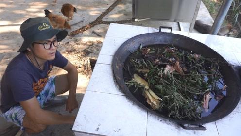 老中医传授了一个偏方,脚哥用来给小鸡治病,熬了满满一大锅