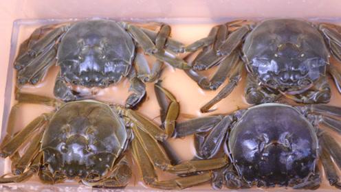 保存螃蟹有绝招,别再傻傻放冷冻了,这样存放7天,依旧很鲜活