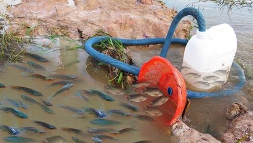 农村男孩化身捕鱼高手,塑料管陷阱一出手,鱼儿主动往里钻!
