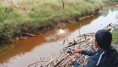 废弃的乡下水渠,没想到内部藏有大鱼,大叔一抛竿结果转眼就中鱼了