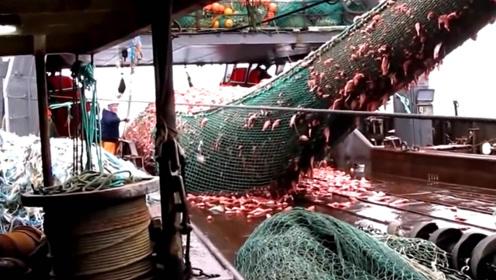 恐怖的远洋捕鱼船,这一网绝对让你震惊……