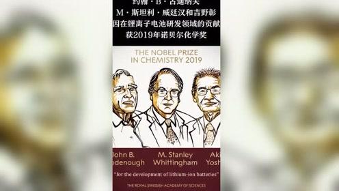 """97岁""""锂电池之父""""等三位科学家获诺贝尔化学奖"""
