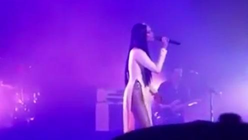美国歌手穿奥黛服饰露大腿 越南网友气坏:快穿上裤子