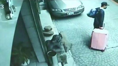"""引爆涉港问题的命案凶手愿赴台自首 台当局却""""不敢接招"""""""