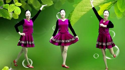 阿连广场舞《花楼恋歌》经典民舞教学